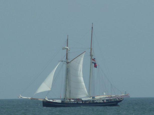 Wylde Swan under sail