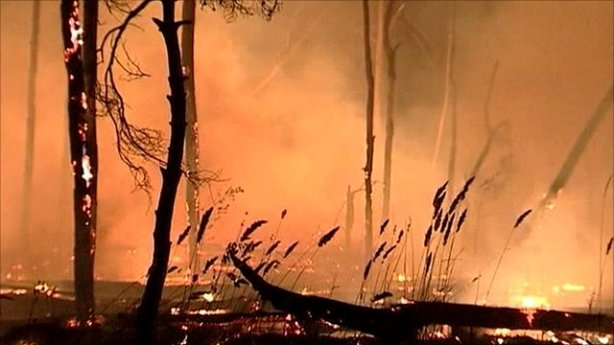 Russian forest fire 2010