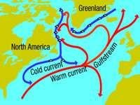gulf-1
