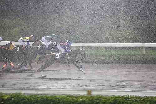 rainy-race