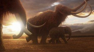 Woolly mammoth animation still [image credit: BBC]
