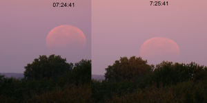 """Lunar eclipse at sunrise Minneapolis October 2014"" by Tomruen - Own work. [via Wikimedia Commons]"