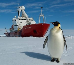 Tackling Antarctic sea ice [image credit: BBC / BAS]