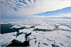 Arctic ice melt [image credit: Jenny E. Ross]