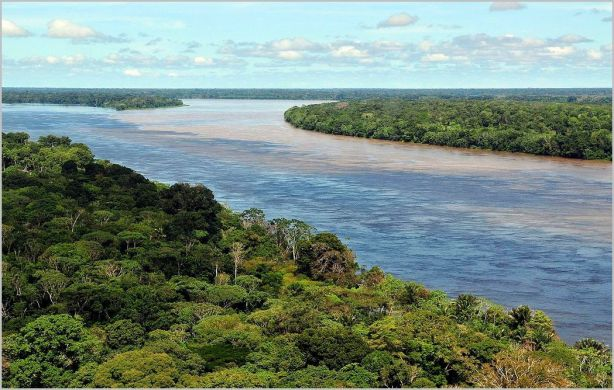 Amazon near Manaus [credit: Wikipedia]