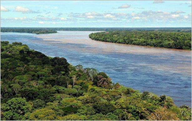 Amazon near Manaus [credit: Wikipedia]