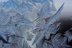 Frost fractals [image credit: Schnobby - Wikipedia]