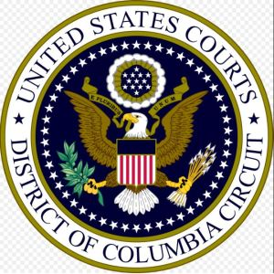 District of Columbia Court of Appeals Seal [credit: Wikipedia]