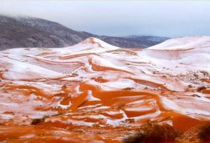 Nearly a White Christmas in the Sahara