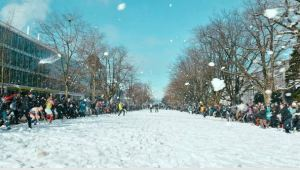 Campus snowball fight, Vancouver [image credit: Daily Hive]