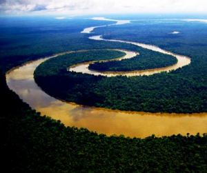 River Amazon in the Peruvian rainforest