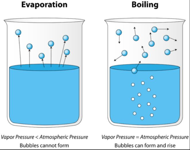 The physics of evaporation explained – pressure is the key factor ...